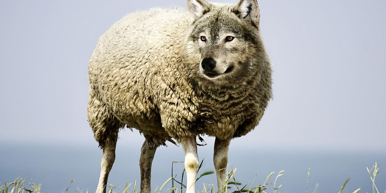 Wolves in Sheep's Clothing – Pastors Who Deny The Essentials of the Faith