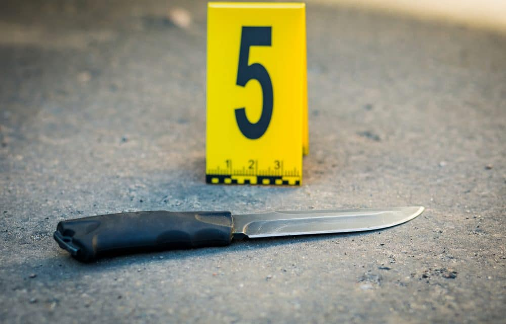 Man 'full of anger' goes on two-hour stabbing rampage leaving 4 dead and 2 wounded in Southern California…