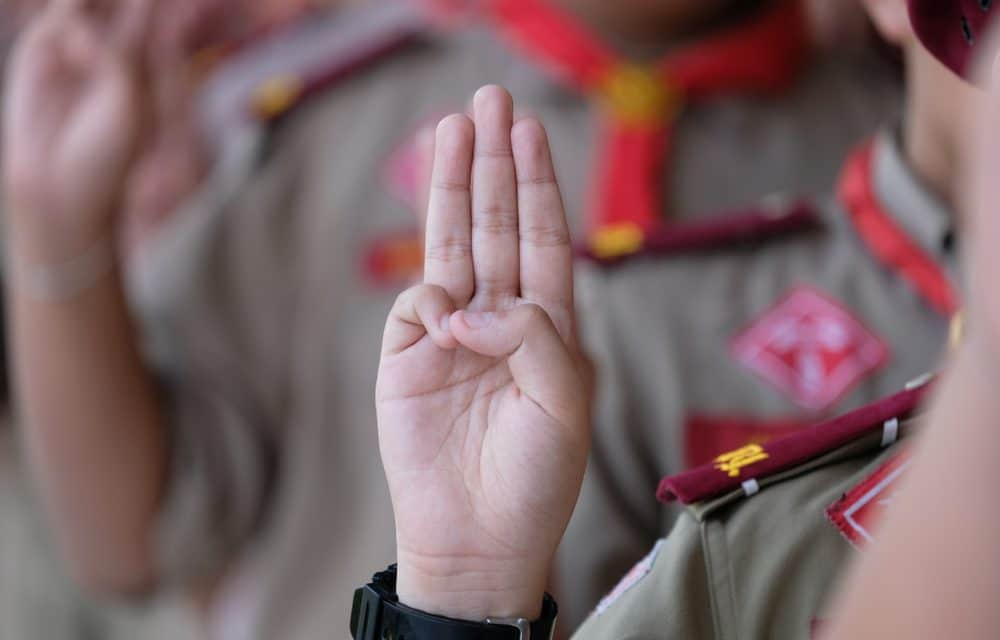 Boy Scouts of America have a 'pedophile epidemic' and are hiding hundreds in its ranks