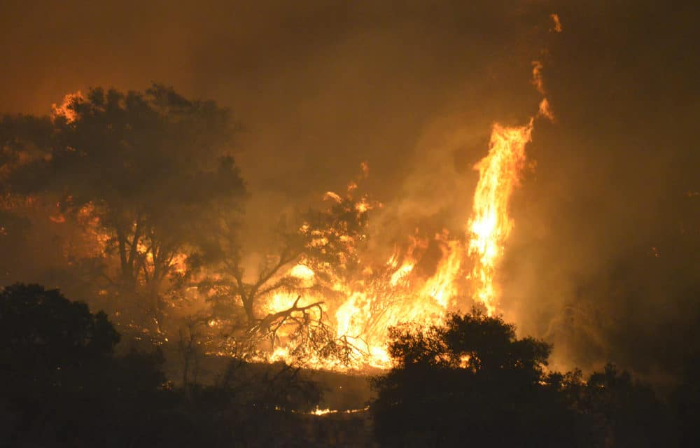 Los Angeles wildfire spreads to 4,000 acres, forcing evacuations in San Fernando Valley