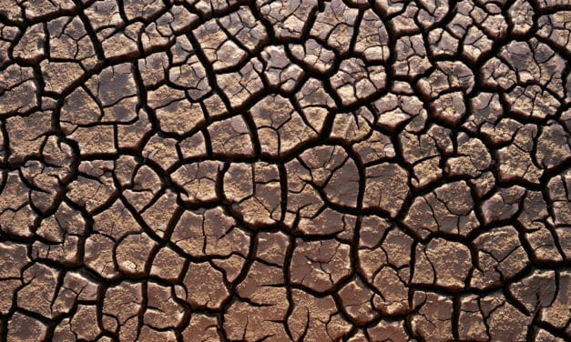 Worst drought in over a century pushes Namibia closer to famine