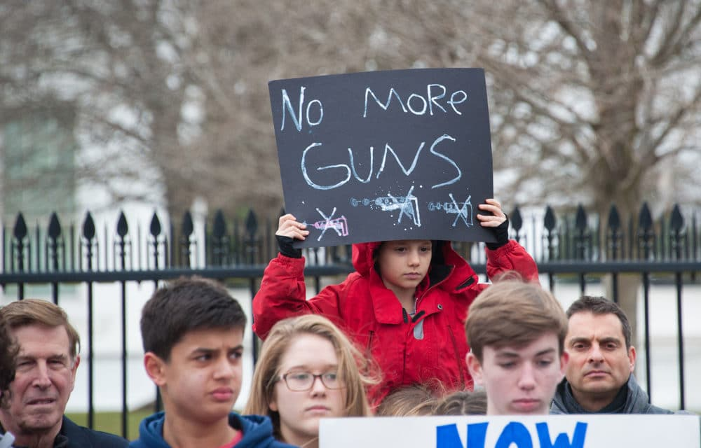 Virginia governor declares state of emergency, imposes Capitol gun ban ahead of gun rights rally…