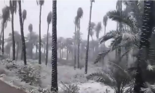 Incredibly Rare Snowfall Blankets Baghdad and Karbala, Iraq