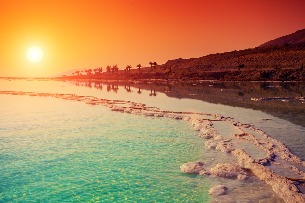 Dead Sea Blooms Floral Wonderland for First Time Prompting Prophecy Fulfillment