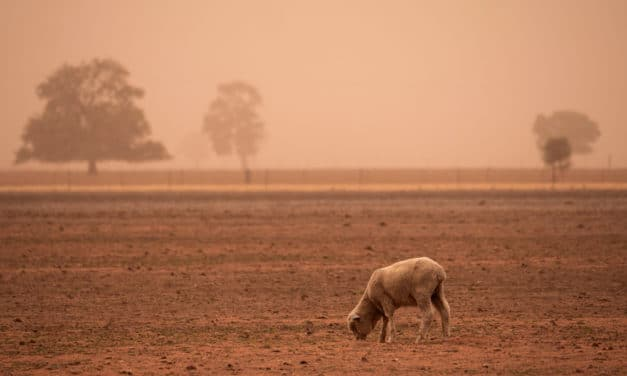 'Megadrought' emerging in the western US might be worse seen in 1,200 years
