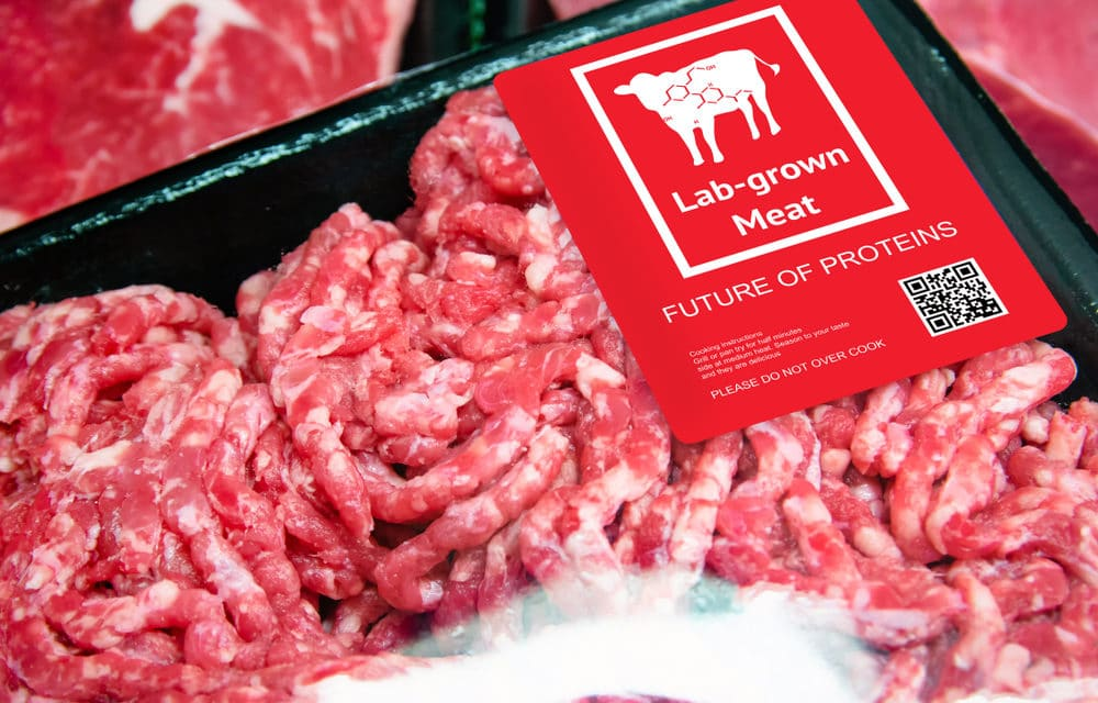 """Tyson Foods Joins Bill Gates and Cargill to Invest in """"Lab-Meat Producer"""""""