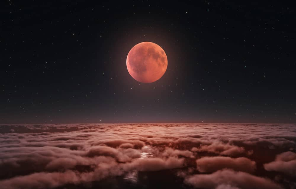 Locusts, Solar Eclipse and Blood Moon Proof of the End Times?