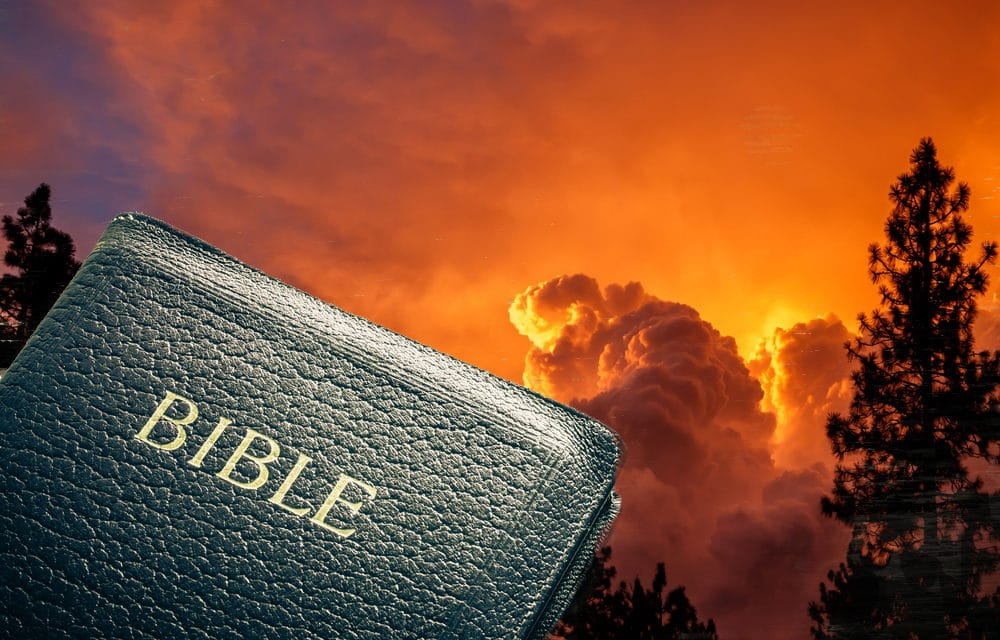 Seven things the False Prophet will do when he rises to power