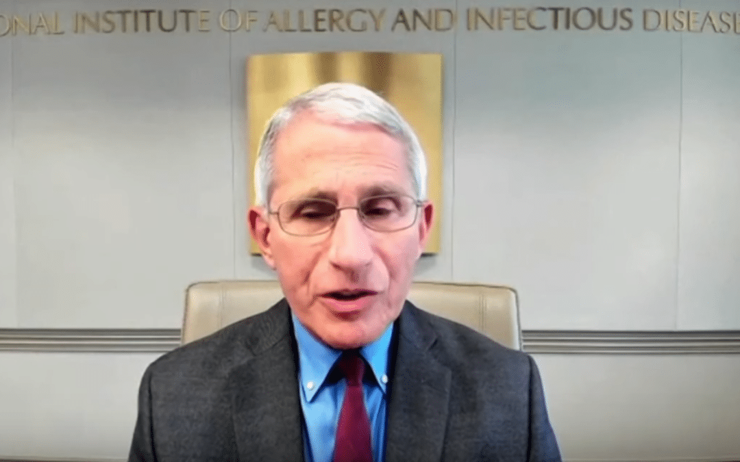 """Fauci Warns that States with severe coronavirus outbreaks """"should seriously look at shutting down"""""""