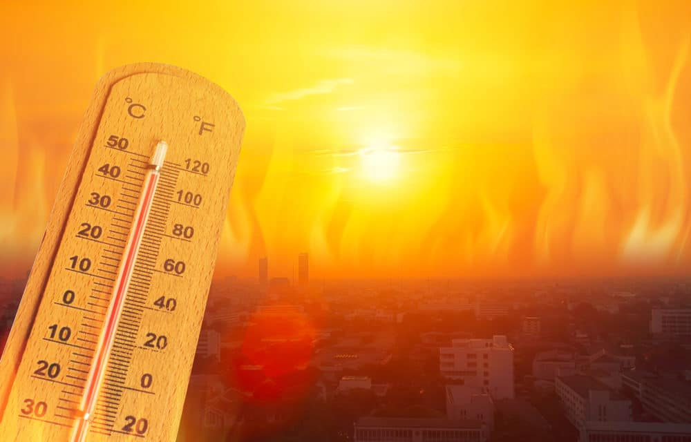 Worst Heatwave in 70 years grips California, 2nd round of blackouts