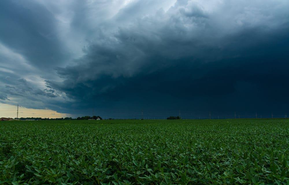 Recent Derecho storm destroyed Iowa harvests, caused catastrophic destruction to millions of acres