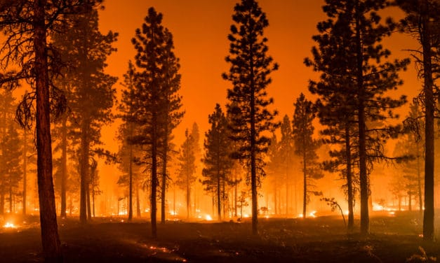 California's deadly wildfires just broke all time record for most acres burned in one year, More than 4 million acres scorched