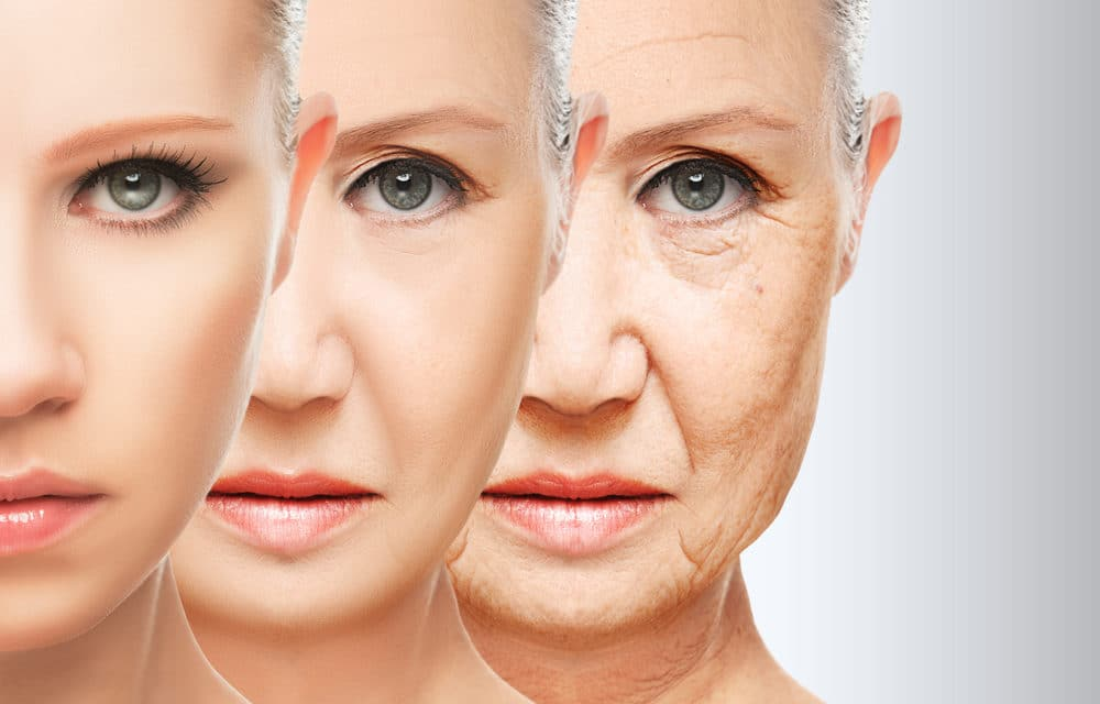 Human aging reversed in first ever 'Holy Grail' study