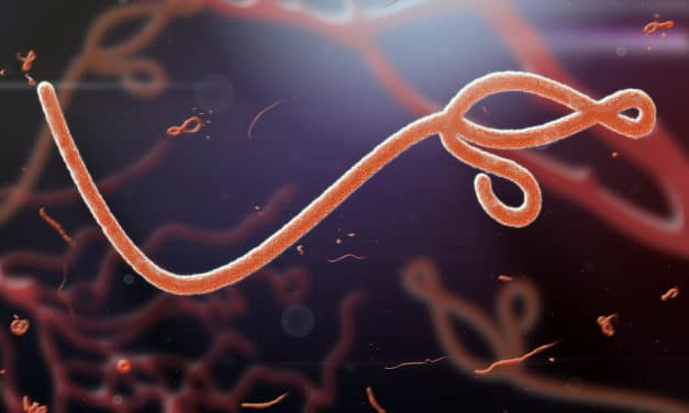 Alert raised in Guinea as ebola kills four in region for first time in five years