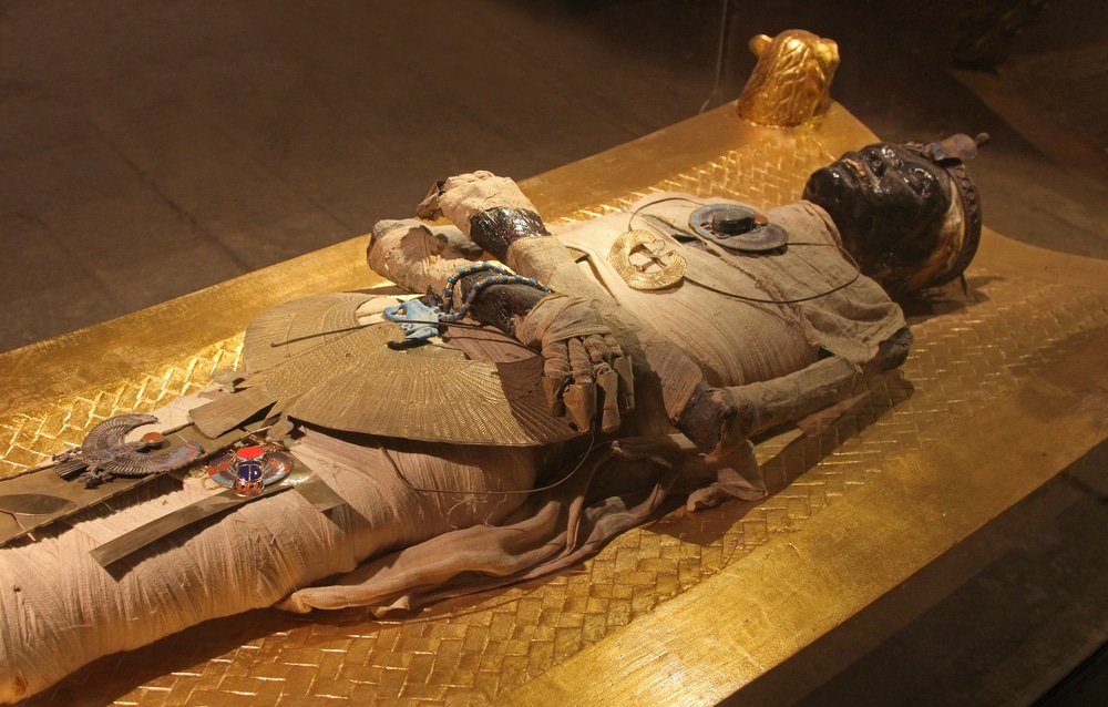 Locals fear 'curse of the Pharaohs' unleashed as 3000 year old royal Egyptian mummies moved