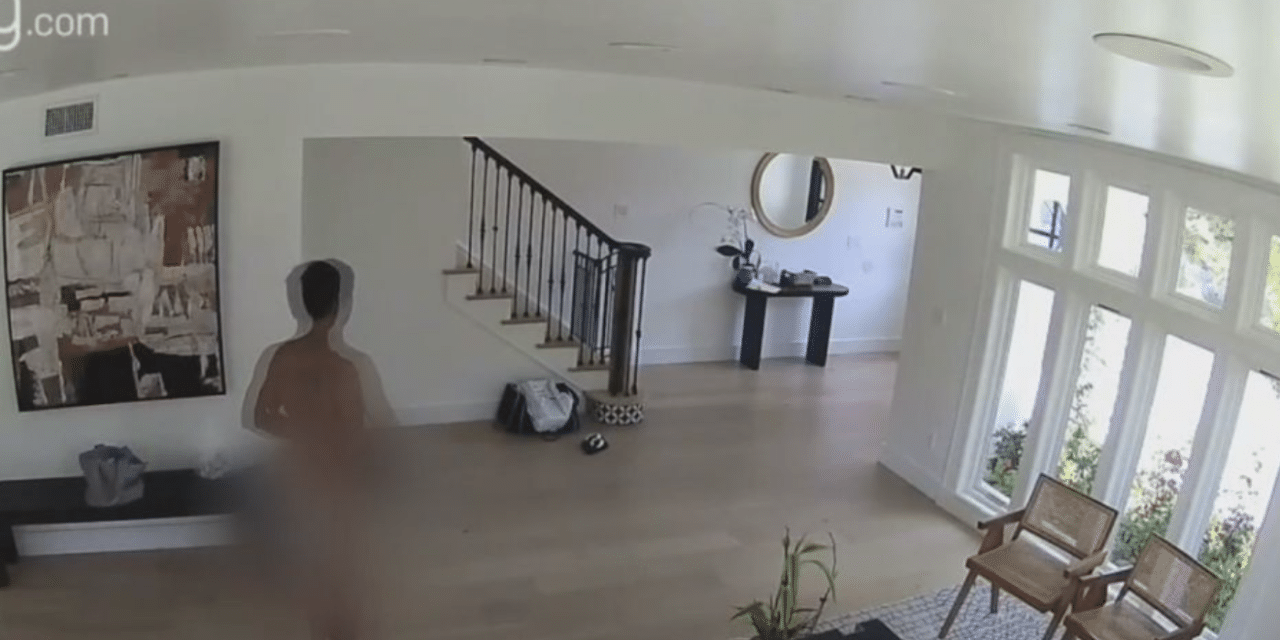 Naked man breaks into owner's home and kills family pets