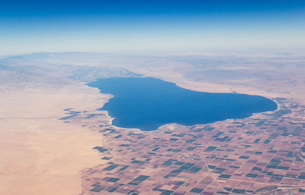Swarms of quakes continue to rattle Salton Sea in Southern California in the past 24 hours