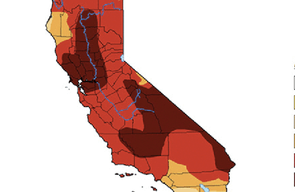 California just had Its driest rain year since 1895, Newsom asks Californians to cut water use, expands emergency as drought worsens