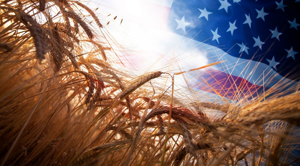 Why is China buying up American farms?