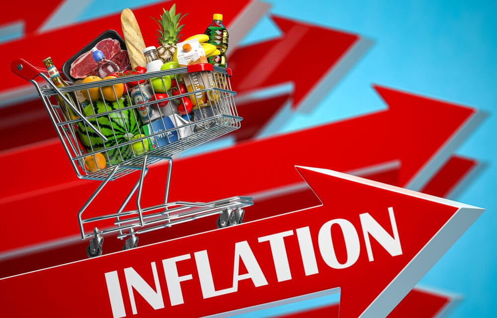 Grocery chain CEO warns grocery prices could rise 10 to 14 percent by October