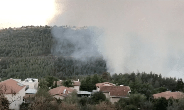 Massive wildfire near Jerusalem causes thousands to evacuate and leaves ominous cloud of smoke over Temple Mount