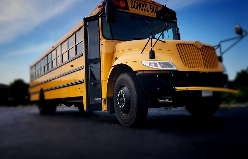 School bus driver stabbed to death while elementary kids watch in horror